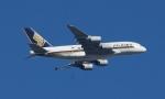 Lovely-Akiさんが、シドニー国際空港で撮影したシンガポール航空 A380-841の航空フォト(写真)