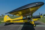 Narita spotterさんが、大利根飛行場で撮影した日本モーターグライダークラブ A-1 Huskyの航空フォト(写真)