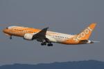 なぁちゃんさんが、関西国際空港で撮影したスクート 787-8 Dreamlinerの航空フォト(写真)