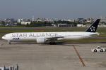 キタチャンさんが、伊丹空港で撮影した全日空 777-381/ERの航空フォト(写真)