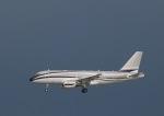 cherrywing787さんが、羽田空港で撮影したグローバル・ジェット・ルクセンブルク A319の航空フォト(写真)
