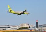 mojioさんが、成田国際空港で撮影したジンエアー 737-8Q8の航空フォト(飛行機 写真・画像)