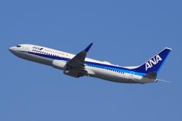キイロイトリさんが、関西国際空港で撮影した全日空 737-881の航空フォト(飛行機 写真・画像)