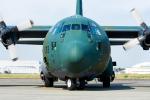 Tomo-Papaさんが、厚木飛行場で撮影した航空自衛隊 C-130H Herculesの航空フォト(写真)
