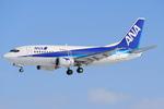 WINGさんが、女満別空港で撮影したANAウイングス 737-5L9の航空フォト(写真)