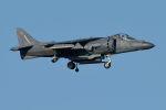 うめやしきさんが、厚木飛行場で撮影したアメリカ海兵隊 AV-8B Harrier II+の航空フォト(飛行機 写真・画像)