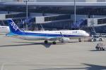 yabyanさんが、中部国際空港で撮影した全日空 A321-211の航空フォト(写真)