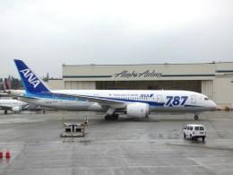 M.Chihara_1さんが、シアトル タコマ国際空港で撮影した全日空 787-8 Dreamlinerの航空フォト(飛行機 写真・画像)