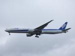M.Chihara_1さんが、シアトル タコマ国際空港で撮影した全日空 777-381/ERの航空フォト(写真)