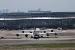 cherrywing787さんが、羽田空港で撮影したルフトハンザドイツ航空 747-830の航空フォト(写真)