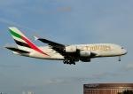 じーく。さんが、成田国際空港で撮影したエミレーツ航空 A380-861の航空フォト(飛行機 写真・画像)