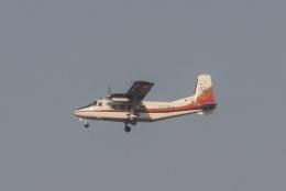 TAOTAOさんが、青島流亭国際空港で撮影した山西成功通用航空 Y-12-IIの航空フォト(飛行機 写真・画像)