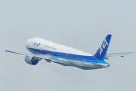 485k60さんが、羽田空港で撮影した全日空 777-281の航空フォト(飛行機 写真・画像)
