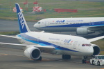 485k60さんが、羽田空港で撮影した全日空 787-8 Dreamlinerの航空フォト(飛行機 写真・画像)