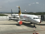 maixxさんが、ソフィア国際空港で撮影したファーストジェット・ジンバブエ A319-131の航空フォト(飛行機 写真・画像)