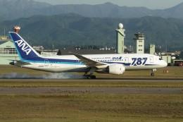 KORYO204さんが、小松空港で撮影した全日空 787-8 Dreamlinerの航空フォト(飛行機 写真・画像)