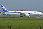 jun☆さんが、スカルノハッタ国際空港で撮影した全日空 787-9の航空フォト(写真)