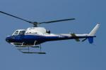 485k60さんが、東京ヘリポートで撮影した東邦航空 AS350B Ecureuilの航空フォト(飛行機 写真・画像)