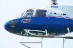 485k60さんが、東京ヘリポートで撮影した東邦航空 AS350B Ecureuilの航空フォト(写真)