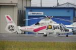 485k60さんが、東京ヘリポートで撮影した東邦航空 AS365N2 Dauphin 2の航空フォト(写真)