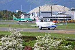 セピアさんが、松本空港で撮影したチャイナエアライン 737-8ALの航空フォト(写真)
