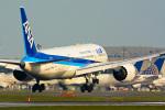 パンダさんが、成田国際空港で撮影した全日空 787-8 Dreamlinerの航空フォト(写真)