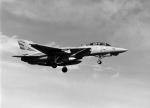 takamaruさんが、厚木飛行場で撮影したノースロップ・グラマン F-14 Tomcatの航空フォト(写真)