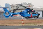 へりさんが、東京ヘリポートで撮影した徳島県警察 EC135T2+の航空フォト(写真)