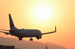 Astechnoさんが、伊丹空港で撮影した日本航空 737-846の航空フォト(写真)