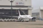 Gouei Changeさんが、成田国際空港で撮影した日本航空 787-8 Dreamlinerの航空フォト(写真)