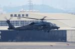 yabyanさんが、名古屋飛行場で撮影した航空自衛隊 UH-60Jの航空フォト(写真)