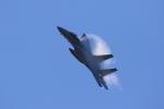 じゃりんこさんが、岐阜基地で撮影した航空自衛隊 F-15J Eagleの航空フォト(写真)