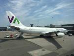 maixxさんが、アムステルダム・スキポール国際空港で撮影したワモス・エア A330-243の航空フォト(飛行機 写真・画像)