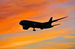 柴犬787さんが、成田国際空港で撮影したジェットスター 787-8 Dreamlinerの航空フォト(写真)