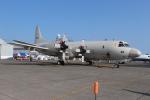 セブンさんが、千歳基地で撮影した海上自衛隊 P-3Cの航空フォト(飛行機 写真・画像)