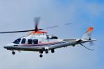 Dojalanaさんが、函館空港で撮影した朝日新聞社 A109SPの航空フォト(写真)