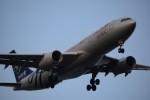Blue Dreamさんが、羽田空港で撮影した中国東方航空 A330-243の航空フォト(写真)