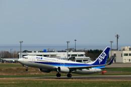 モモさんが、紋別空港で撮影した全日空 737-881の航空フォト(飛行機 写真・画像)