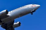 パンダさんが、羽田空港で撮影した日本トランスオーシャン航空 737-446の航空フォト(写真)