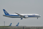 tsubasa0624さんが、羽田空港で撮影した全日空 787-9の航空フォト(飛行機 写真・画像)