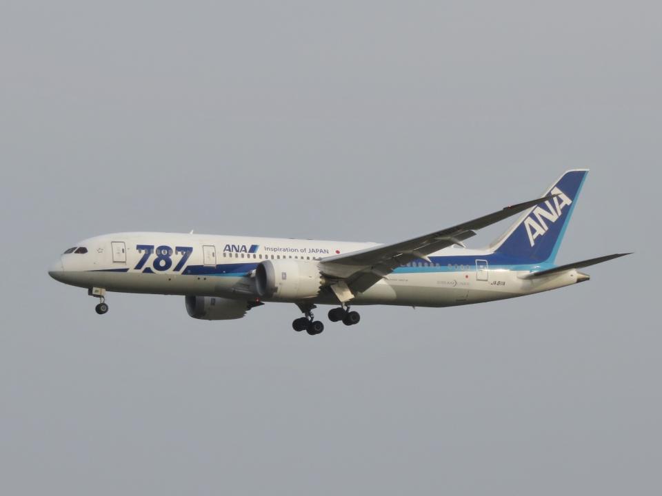 aquaさんの全日空 Boeing 787-8 Dreamliner (JA811A) 航空フォト