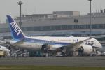 nob24kenさんが、新千歳空港で撮影した全日空 787-8 Dreamlinerの航空フォト(写真)