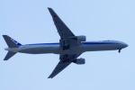 485k60さんが、福岡空港で撮影した全日空 777-381の航空フォト(飛行機 写真・画像)