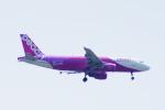 485k60さんが、福岡空港で撮影したピーチ A320-214の航空フォト(写真)