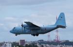 yabyanさんが、那覇空港で撮影した航空自衛隊 C-130H Herculesの航空フォト(写真)