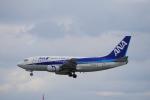 yabyanさんが、那覇空港で撮影したANAウイングス 737-54Kの航空フォト(写真)