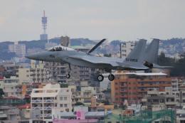 yabyanさんが、那覇空港で撮影した航空自衛隊 F-15J Eagleの航空フォト(写真)