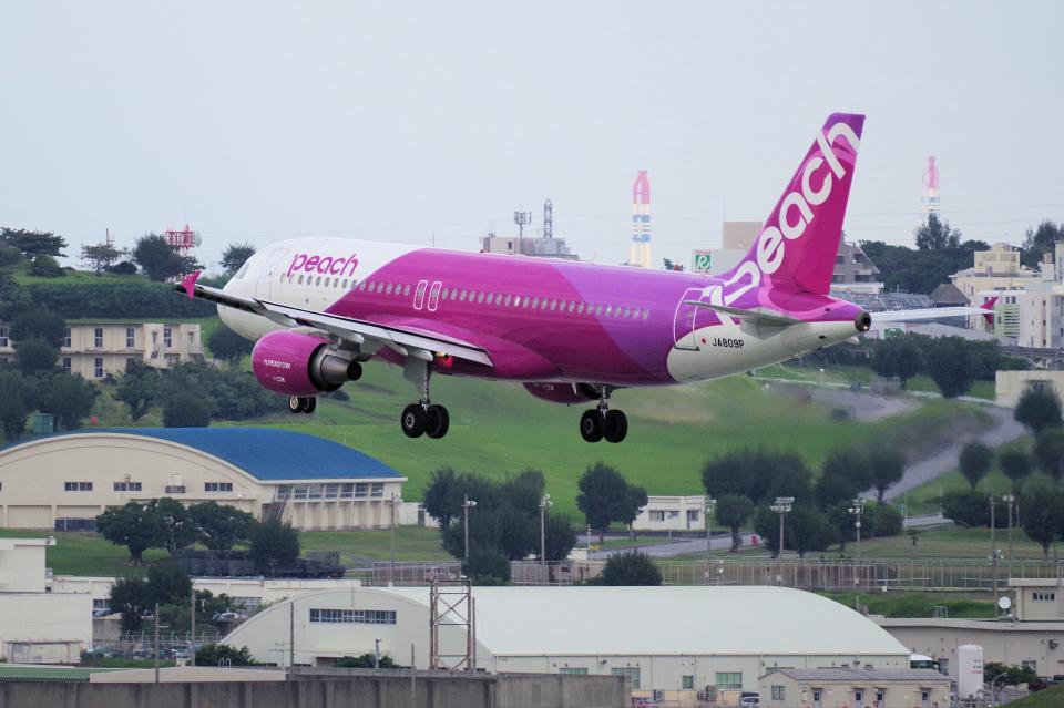 yabyanさんのピーチ Airbus A320 (JA809P) 航空フォト