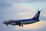 yabyanさんが、那覇空港で撮影したANAウイングス 737-54Kの航空フォト(飛行機 写真・画像)