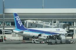 小牛田薫さんが、那覇空港で撮影した全日空 A320-211の航空フォト(飛行機 写真・画像)